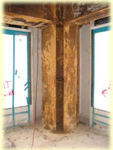 Asbestos Abatement services from Texas Environmental Control