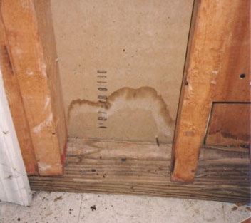 What Is Causing The Mold Growth In My Home Water Stain Inside Wall